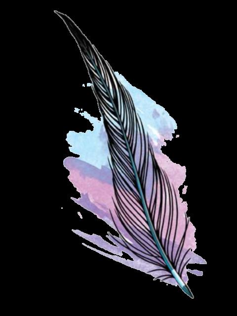 https://www.destinarti.it/wp-content/uploads/2019/12/kisspng-feather-desktop-wallpaper-abziehtattoo-skin-feather-feathers-sticker-by-jessica-knable-5b6e2e72603cd1.3615508215339475063942-480x640.png